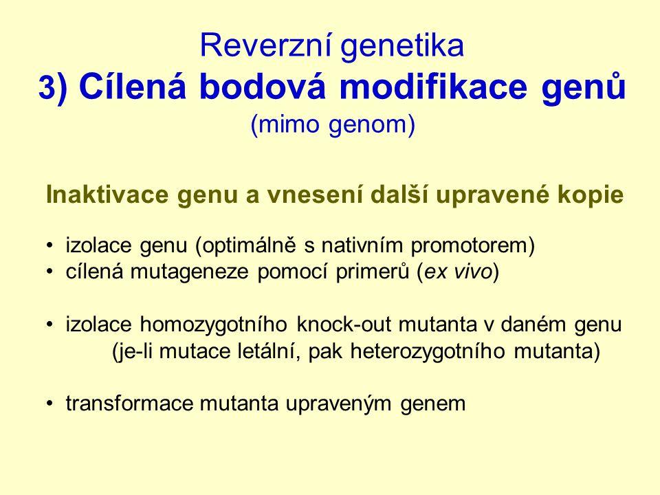 Reverzní genetika 3) Cílená bodová modifikace genů (mimo genom)