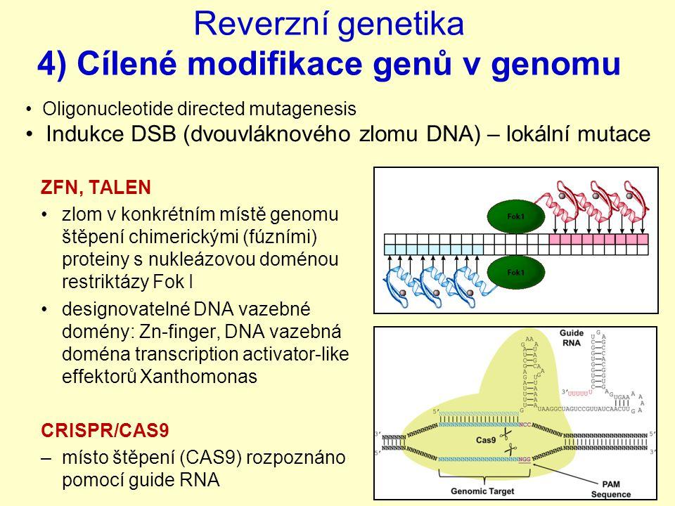 Reverzní genetika 4) Cílené modifikace genů v genomu