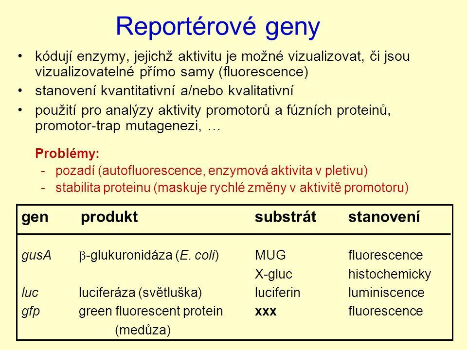 Reportérové geny gen produkt substrát stanovení