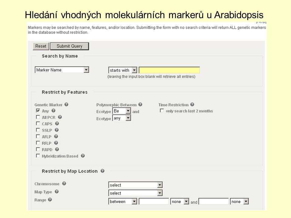 Hledání vhodných molekulárních markerů u Arabidopsis