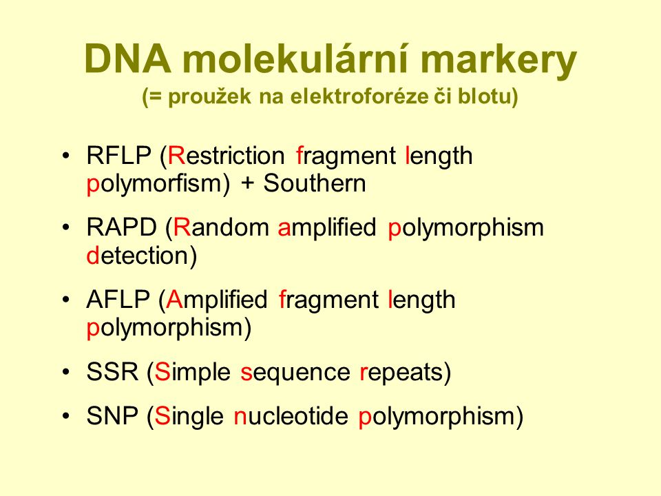 DNA molekulární markery (= proužek na elektroforéze či blotu)