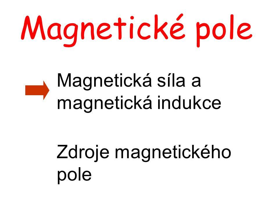 Magnetické pole Magnetická síla a magnetická indukce