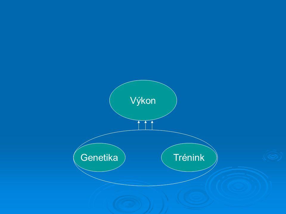 Výkon Genetika Trénink