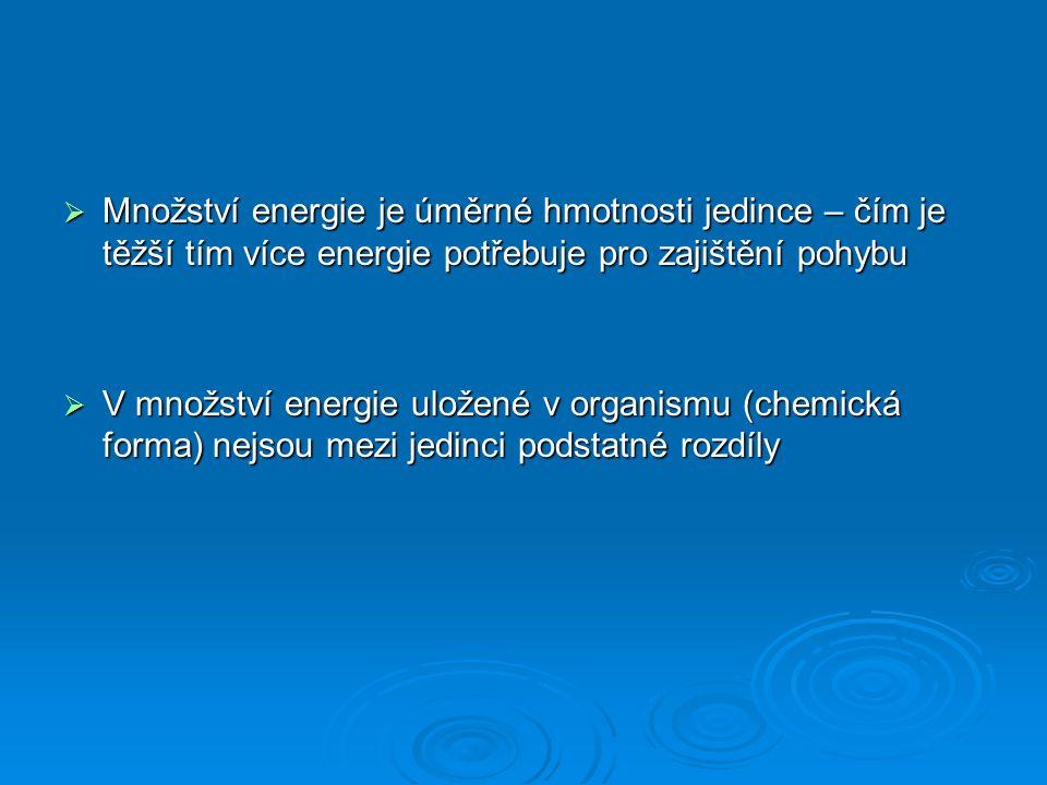 Množství energie je úměrné hmotnosti jedince – čím je těžší tím více energie potřebuje pro zajištění pohybu