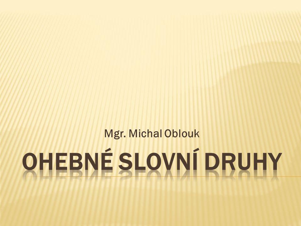 Mgr. Michal Oblouk OHEBNÉ SLOVNÍ DRUHY