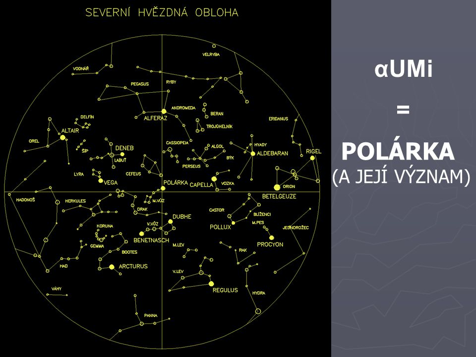 αUMi = POLÁRKA (A JEJÍ VÝZNAM)