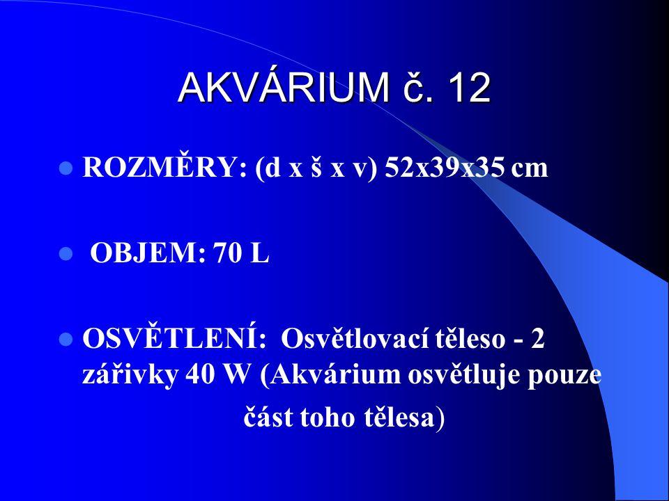 AKVÁRIUM č. 12 ROZMĚRY: (d x š x v) 52x39x35 cm OBJEM: 70 L