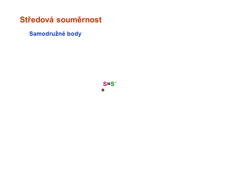 Středová souměrnost Samodružné body S=S´ S