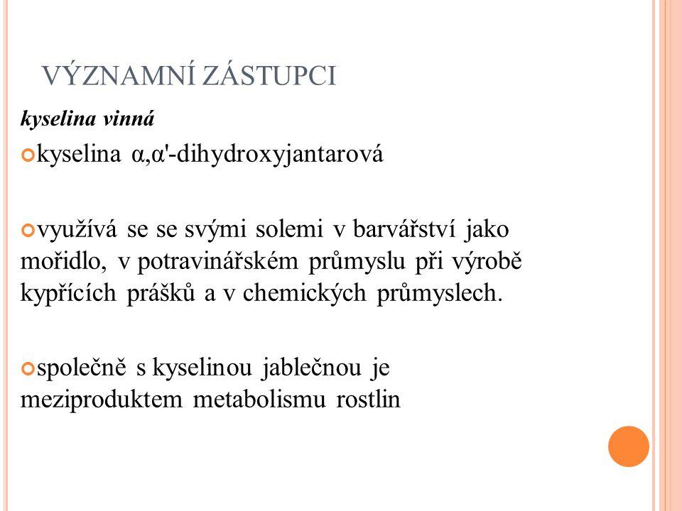 VÝZNAMNÍ ZÁSTUPCI kyselina α,α -dihydroxyjantarová