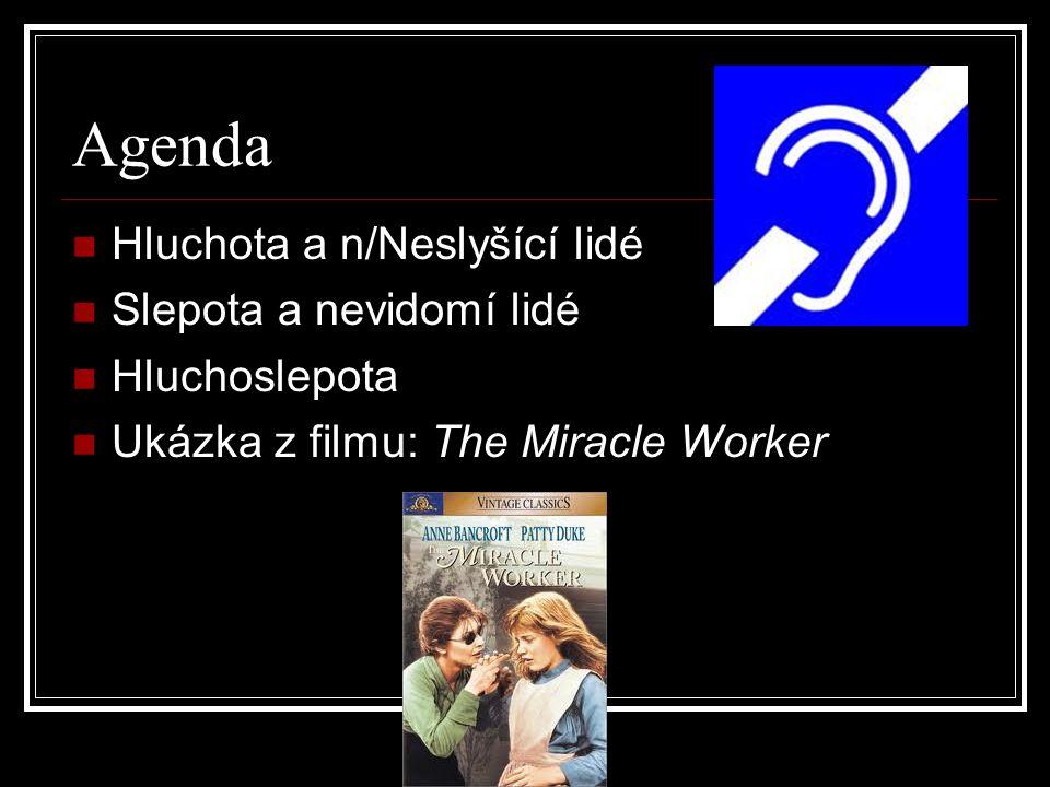 Agenda Hluchota a n/Neslyšící lidé Slepota a nevidomí lidé