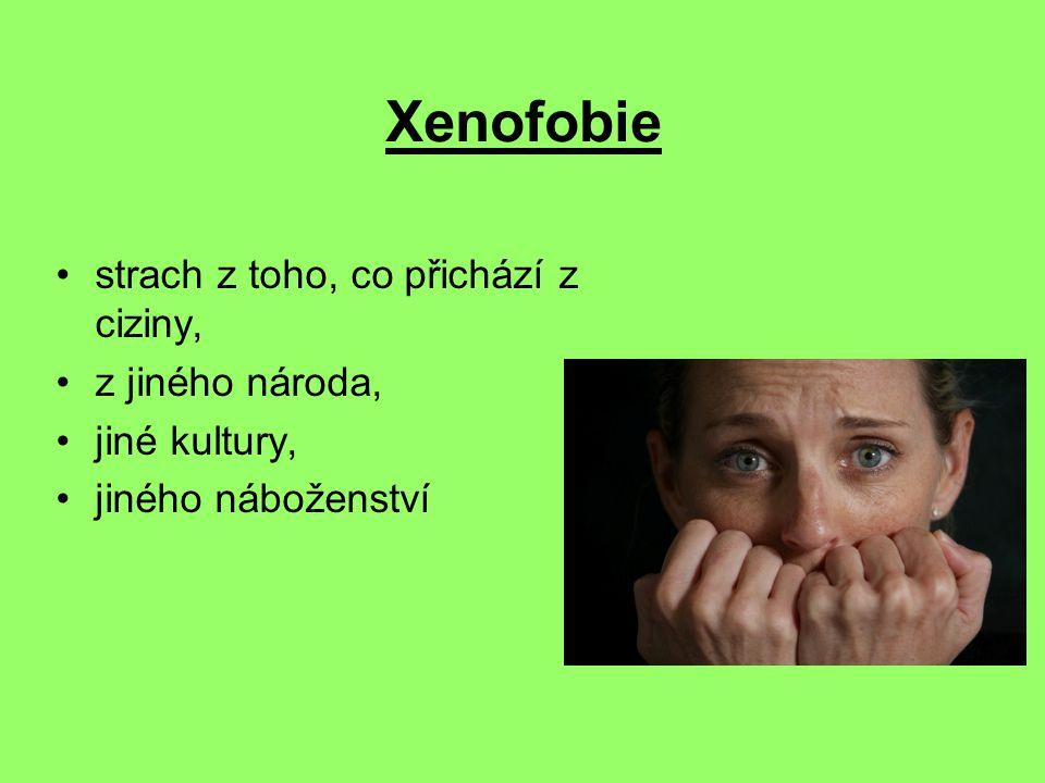 Xenofobie strach z toho, co přichází z ciziny, z jiného národa,