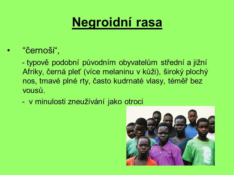 Negroidní rasa černoši ,