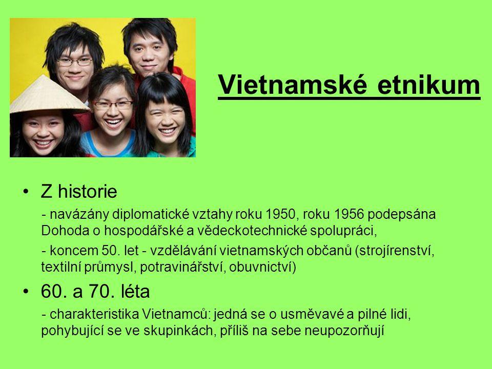 Vietnamské etnikum Z historie 60. a 70. léta