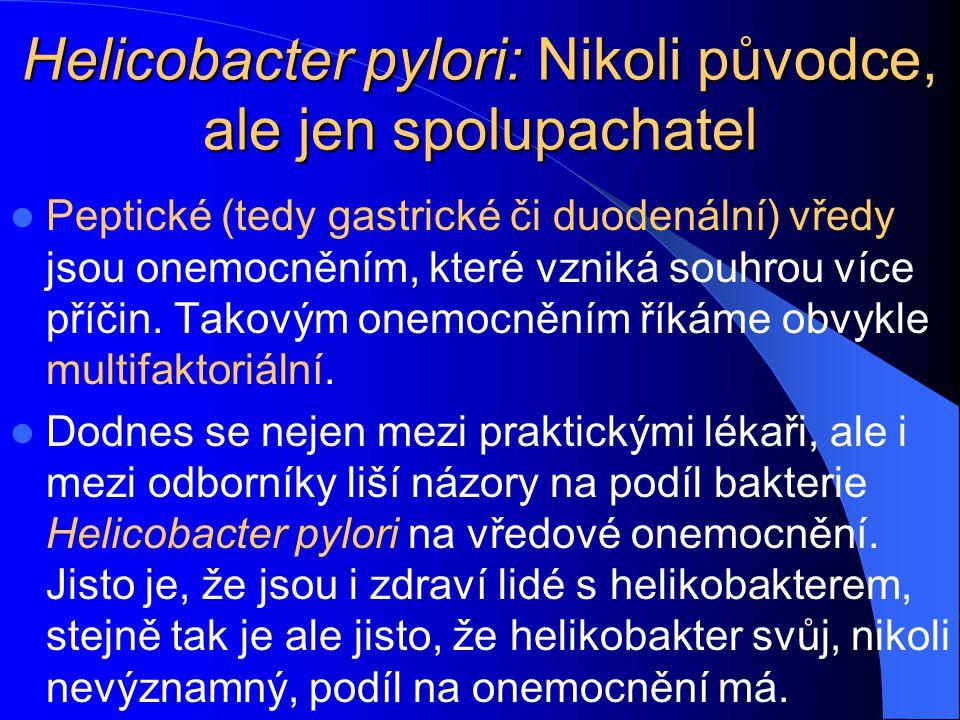 Helicobacter pylori: Nikoli původce, ale jen spolupachatel
