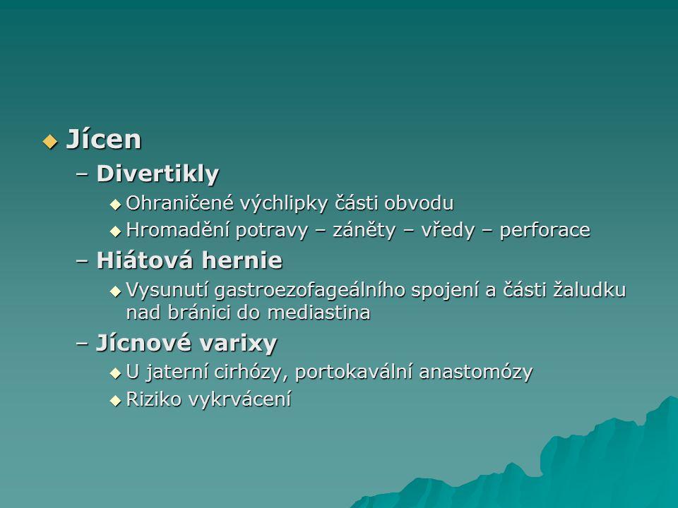 Jícen Divertikly Hiátová hernie Jícnové varixy