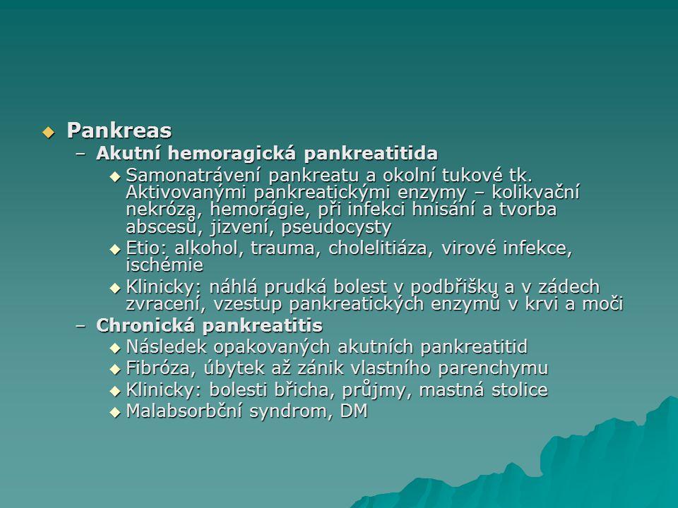 Pankreas Akutní hemoragická pankreatitida