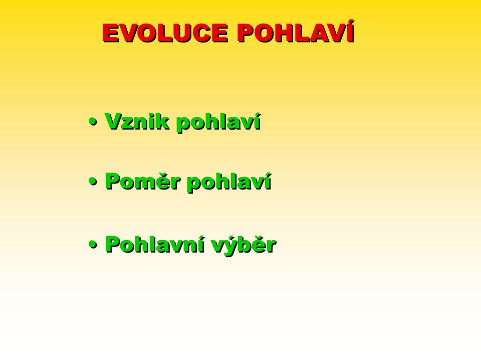 EVOLUCE POHLAVÍ Vznik pohlaví Poměr pohlaví Pohlavní výběr