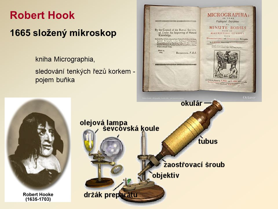 Robert Hook 1665 složený mikroskop kniha Micrographia,