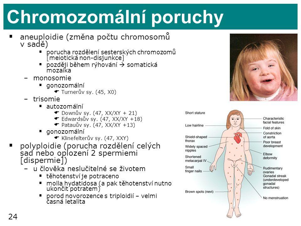 Chromozomální poruchy