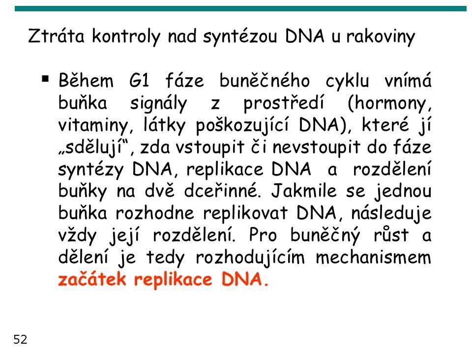 Ztráta kontroly nad syntézou DNA u rakoviny