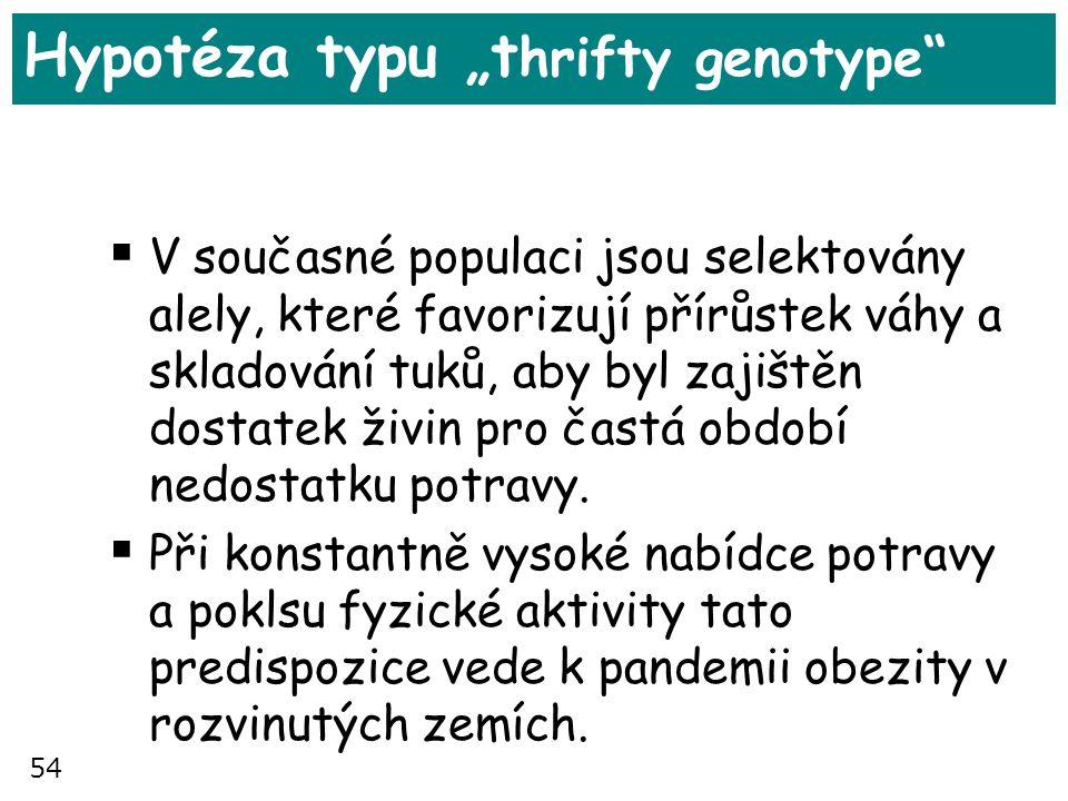 "Hypotéza typu ""thrifty genotype"