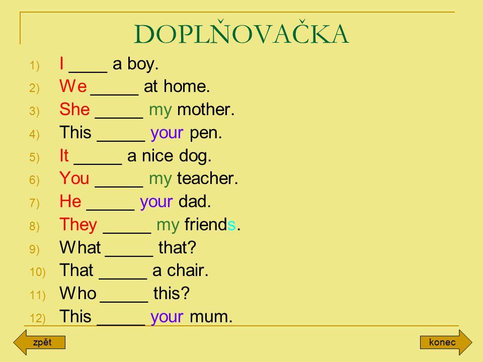 DOPLŇOVAČKA I ____ a boy. We _____ at home. She _____ my mother.