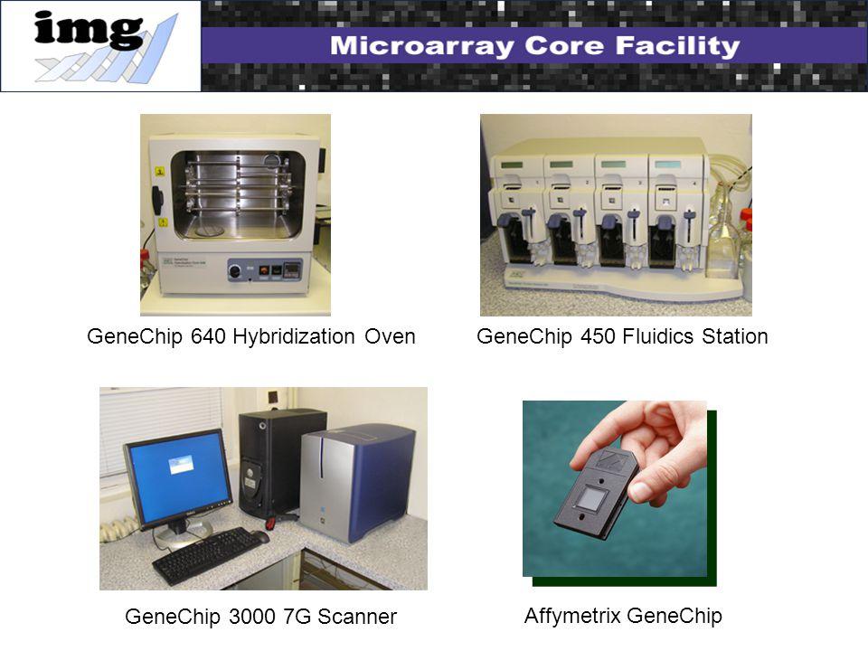 GeneChip 640 Hybridization Oven