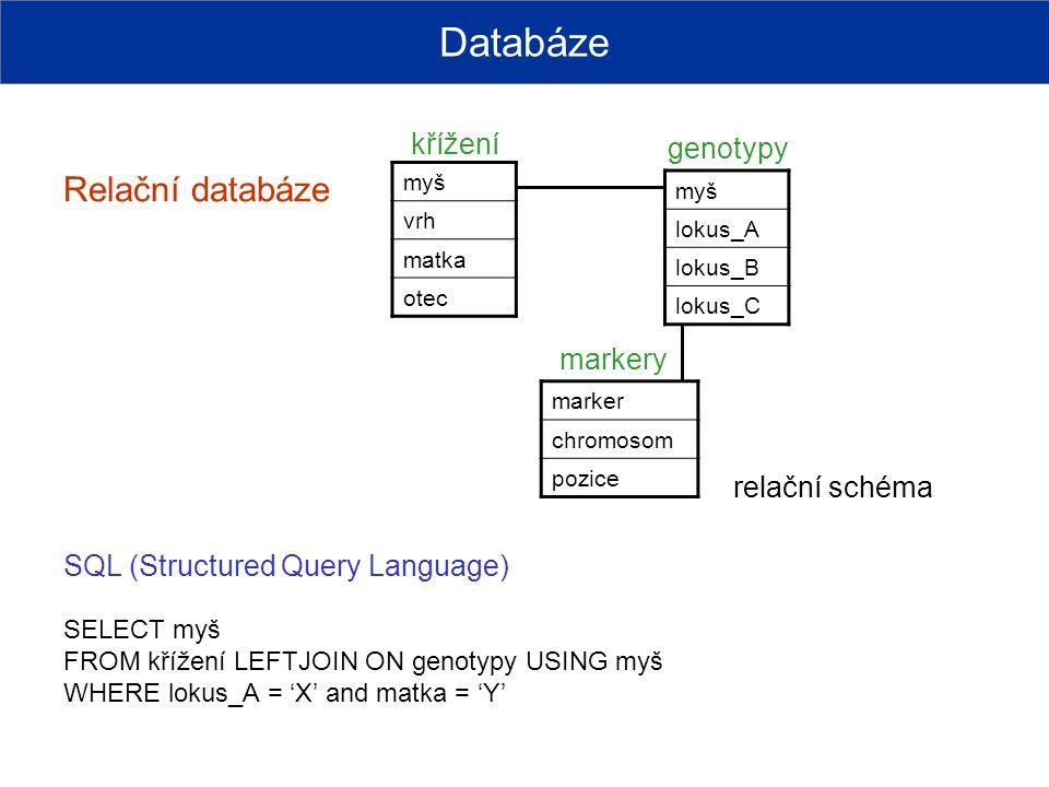 Databáze Relační databáze křížení genotypy markery relační schéma