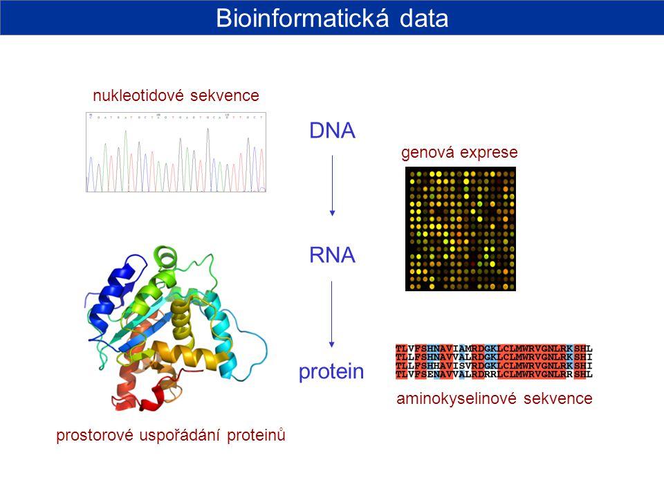 Bioinformatická data DNA RNA protein nukleotidové sekvence
