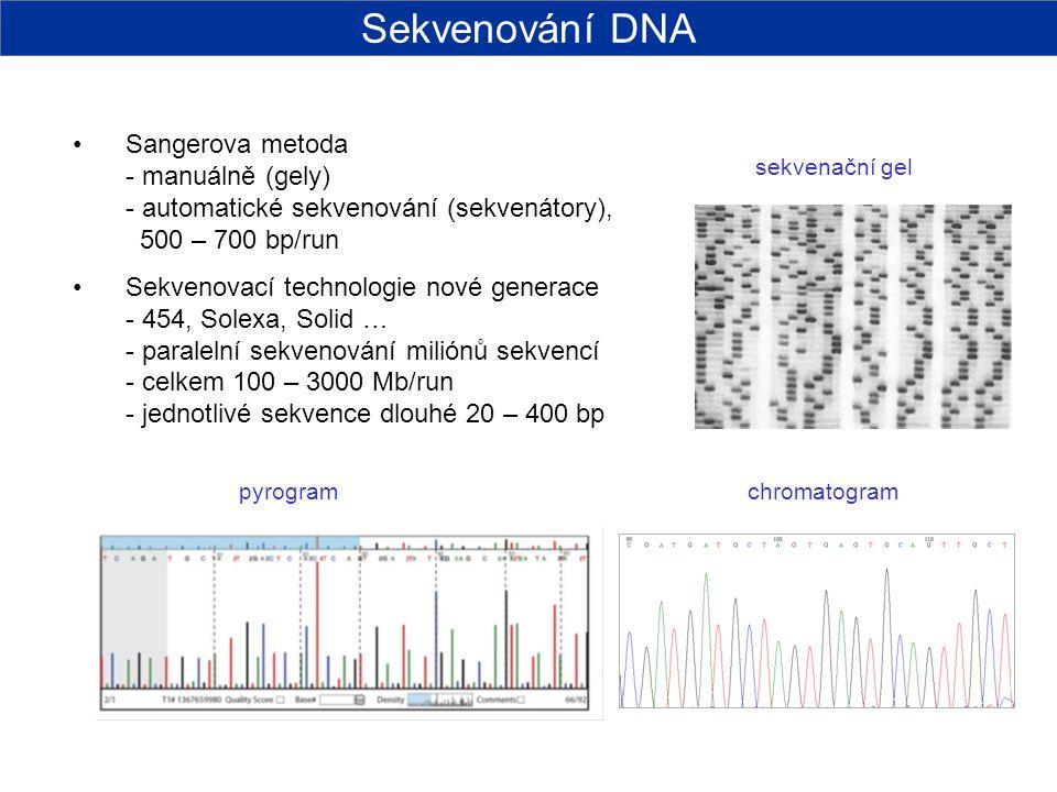 Sekvenování DNA Sangerova metoda - manuálně (gely) - automatické sekvenování (sekvenátory), 500 – 700 bp/run.