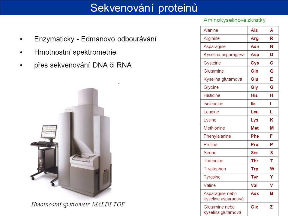 Sekvenování proteinů Enzymaticky - Edmanovo odbourávání