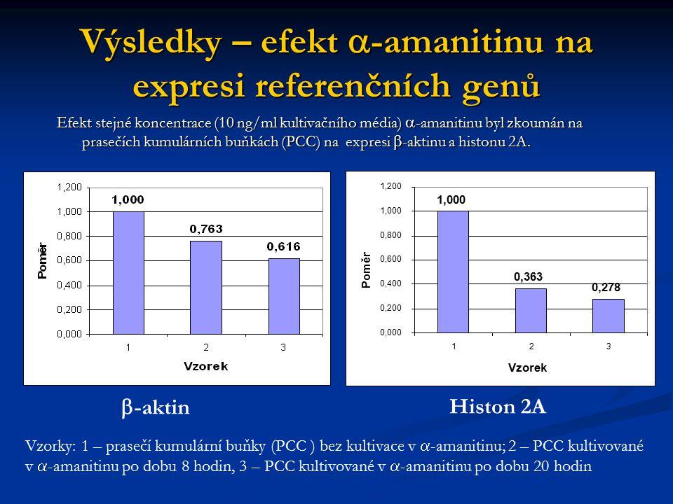 Výsledky – efekt a-amanitinu na expresi referenčních genů