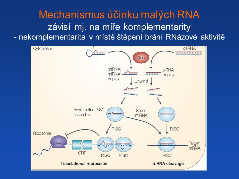 Mechanismus účinku malých RNA