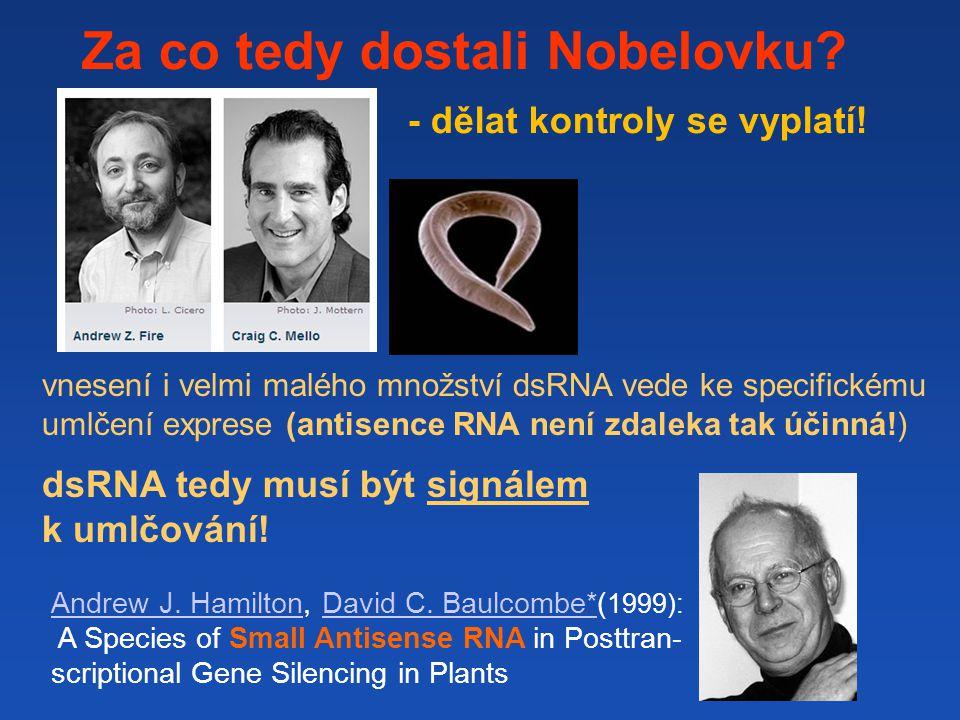 Za co tedy dostali Nobelovku - dělat kontroly se vyplatí!