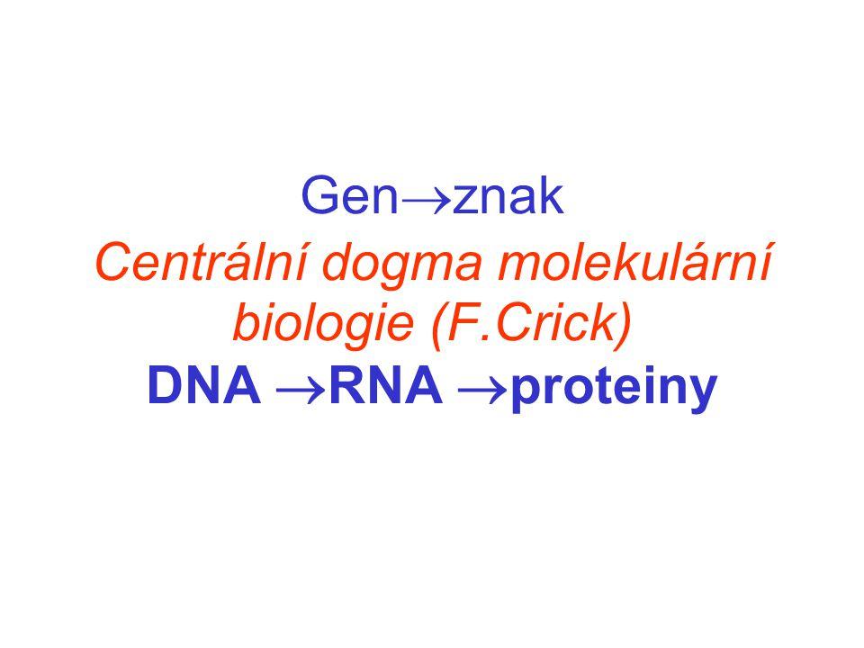 Genznak Centrální dogma molekulární biologie (F