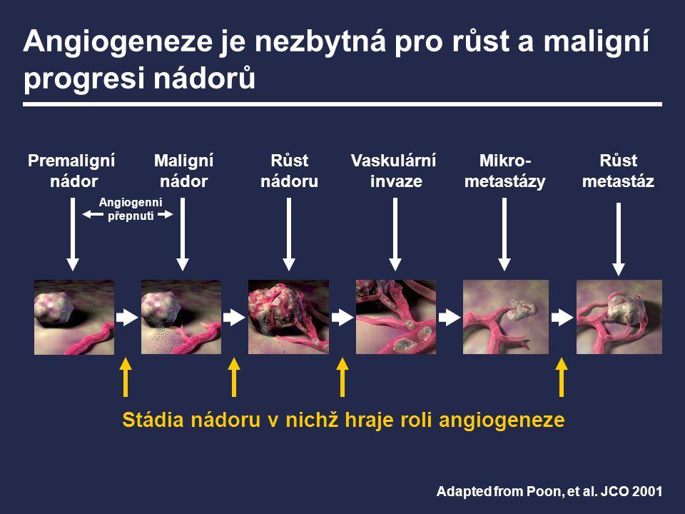 Angiogeneze je nezbytná pro růst a maligní progresi nádorů