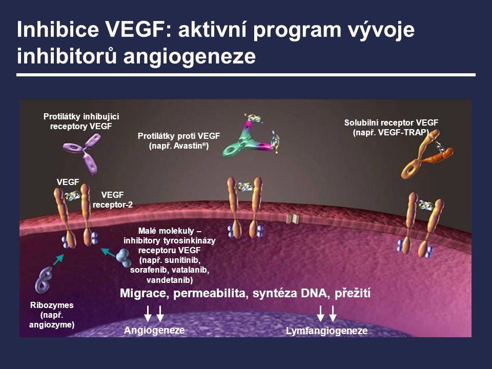 Inhibice VEGF: aktivní program vývoje inhibitorů angiogeneze