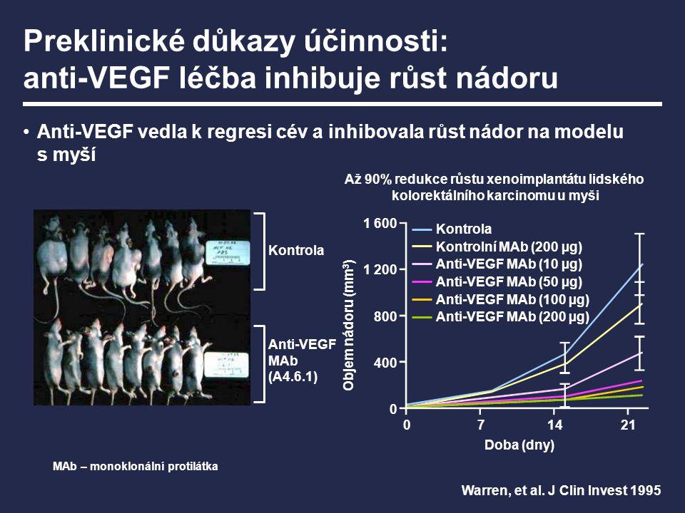 Preklinické důkazy účinnosti: anti-VEGF léčba inhibuje růst nádoru