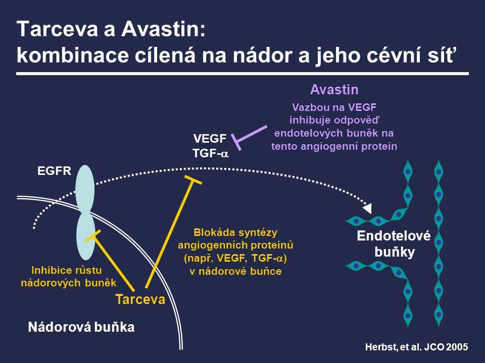 Tarceva a Avastin: kombinace cílená na nádor a jeho cévní síť