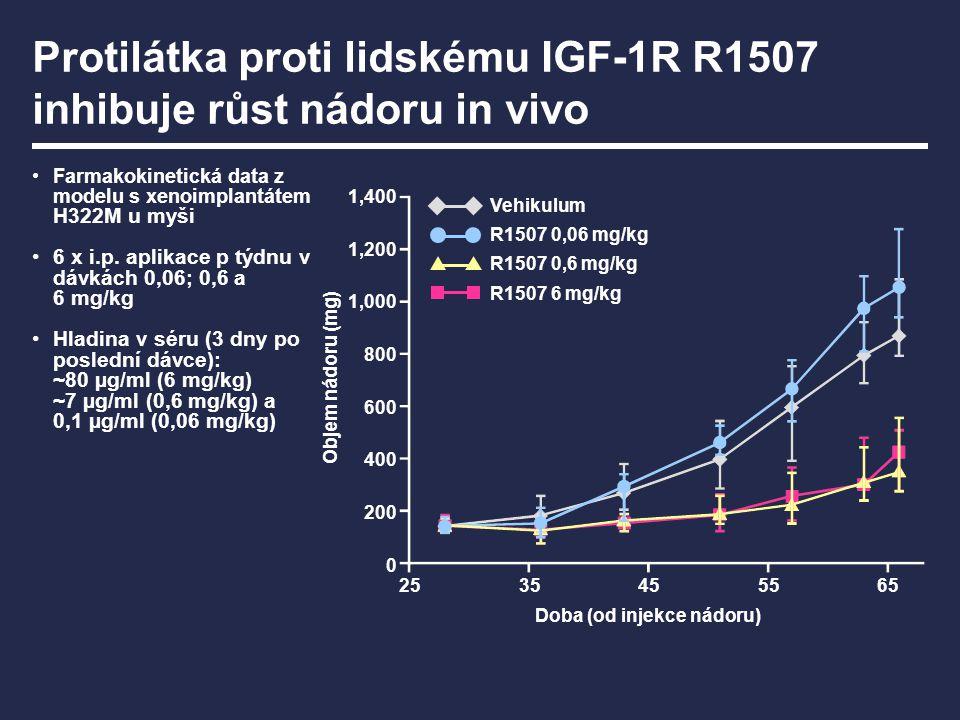Protilátka proti lidskému IGF-1R R1507 inhibuje růst nádoru in vivo