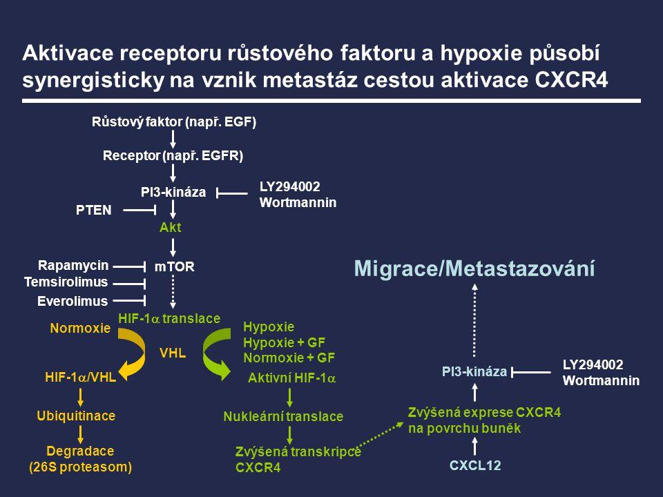 Růstový faktor (např. EGF) Migrace/Metastazování