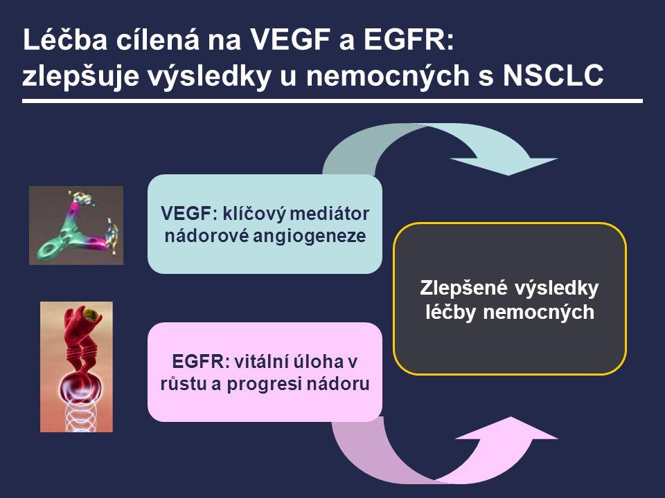 Léčba cílená na VEGF a EGFR: zlepšuje výsledky u nemocných s NSCLC