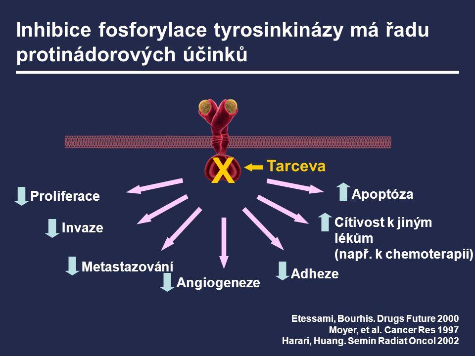 Inhibice fosforylace tyrosinkinázy má řadu protinádorových účinků
