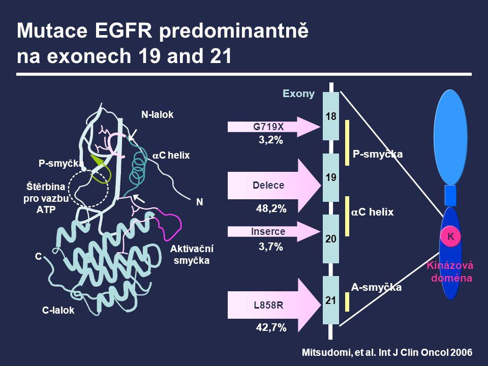 Mutace EGFR predominantně na exonech 19 and 21