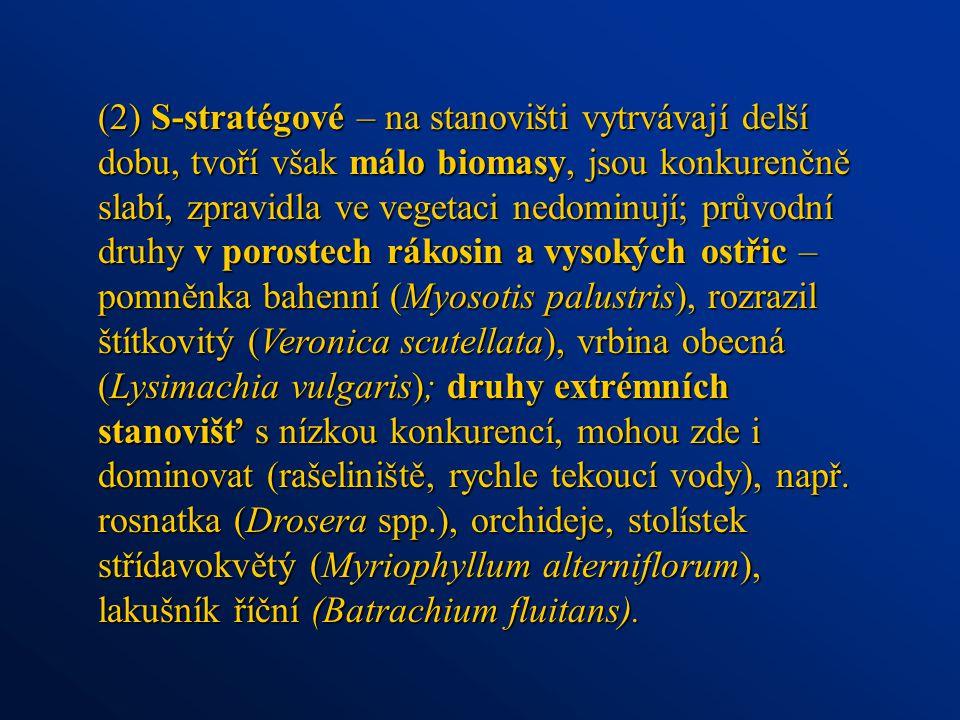 (2) S-stratégové – na stanovišti vytrvávají delší dobu, tvoří však málo biomasy, jsou konkurenčně slabí, zpravidla ve vegetaci nedominují; průvodní druhy v porostech rákosin a vysokých ostřic – pomněnka bahenní (Myosotis palustris), rozrazil štítkovitý (Veronica scutellata), vrbina obecná (Lysimachia vulgaris); druhy extrémních stanovišť s nízkou konkurencí, mohou zde i dominovat (rašeliniště, rychle tekoucí vody), např.