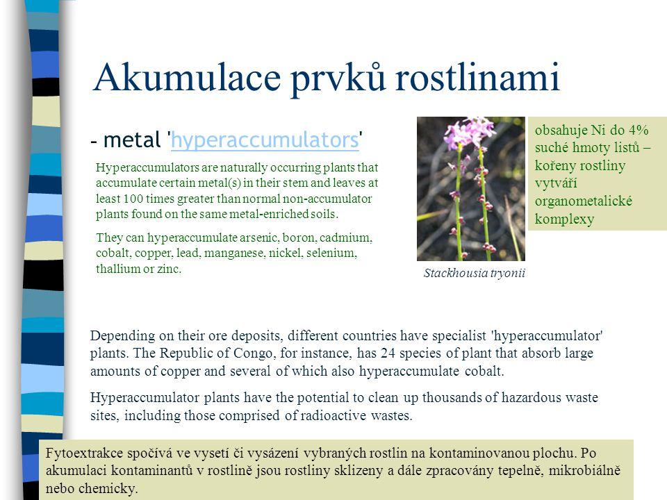 Akumulace prvků rostlinami