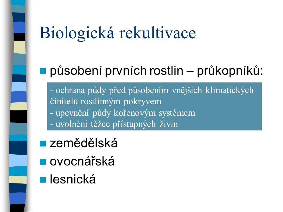 Biologická rekultivace