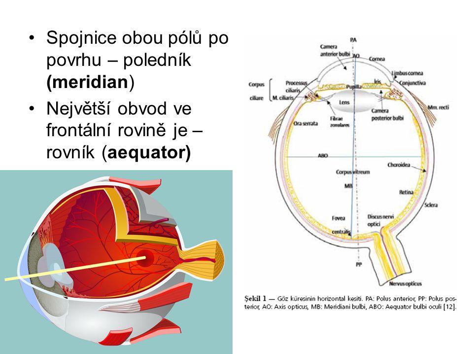 Spojnice obou pólů po povrhu – poledník (meridian)