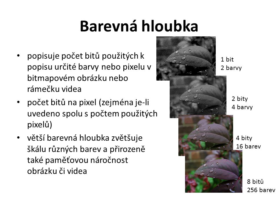 Barevná hloubka popisuje počet bitů použitých k popisu určité barvy nebo pixelu v bitmapovém obrázku nebo rámečku videa.