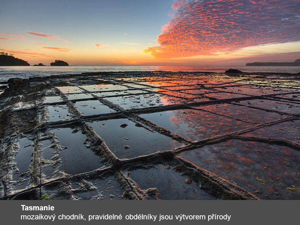 Tasmanie mozaikový chodník, pravidelné obdélníky jsou výtvorem přírody